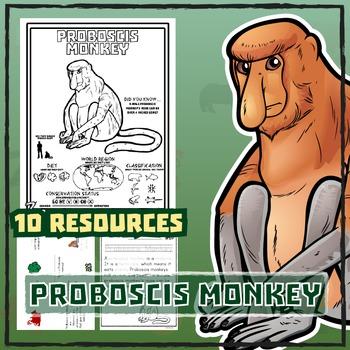 Proboscis Monkey -- 10 Resources -- Coloring Pages, Readin