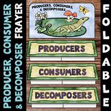 Producer, Consumer, Decomposer {Ecology Vocabulary Foldabl