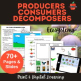 Producers, Consumers, Decomposers Science Lessons, Workshe