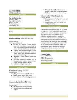 Professional Teaching Resume Template