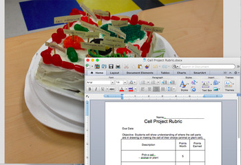 Animal/ Plant Cell Project Rubric (SOL 5.7)