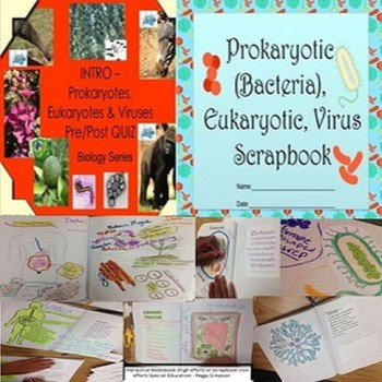 Prokaryotes, Eukaryotes & Viruses Biology Life Science Qui
