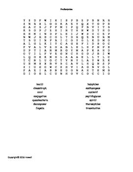Prokaryotes Word Search for Middle School Science