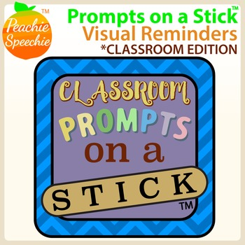Prompts on a Stick: Visual Reminders for Classroom Management