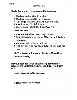 Pronoun Test