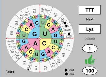 Protein Synthesis Practice App