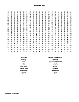 Protists and Fungi Word Search for Middle School Science