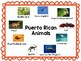 Puerto Rico Vocabulary Words Plus + Color by Code Flag!