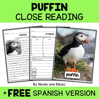 Close Reading Puffin Activities