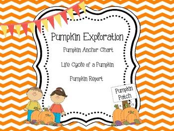 Pumpkin Exploration
