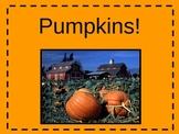 Pumpkin Information Powerpoint KWL