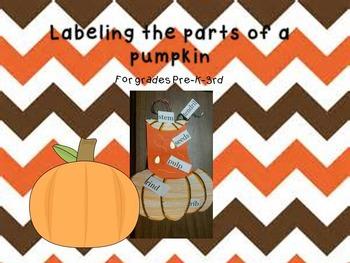 Pumpkin Labeling