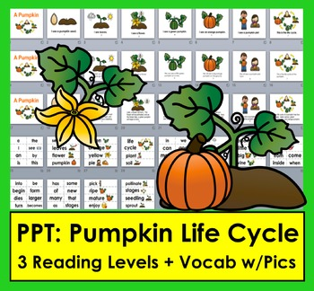 Pumpkins Life Cycle PowerPoint -3 Reading Levels + Illustr