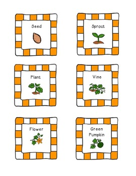 Pumpkin Life Cycle Cards