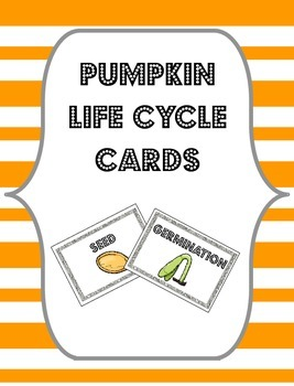 Pumpkin Life Cycle Cards {Flashcards, Sorting Cards or Bul