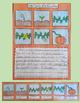 Pumpkin Life Cycle Craftivity
