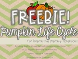 Pumpkin Life Cycle FREEBIE for Interactive Notebooks