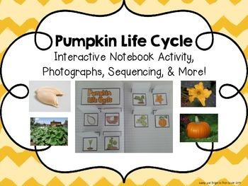 Pumpkin Life Cycle- Interactive Notebook, Photographs, Seq