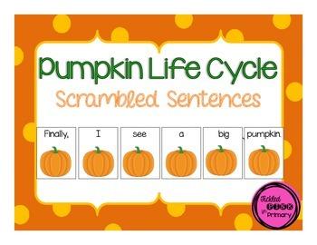 Pumpkin Life Cycle Scrambled Sentences