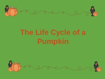 Pumpkin Life Cycle and Decorating Fun