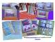 Pumpkin Life Cycle and Patch Fun in Preschool and Kindergarten