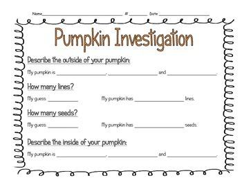 Pumpkin Math Investigation