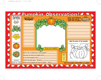 Pumpkin Observation Activity Mats