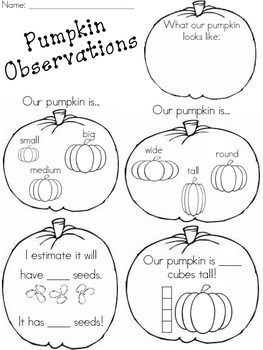 Pumpkin Observations