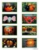Pumpkin Photo Matching for Autism