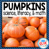 Pumpkins Bundle