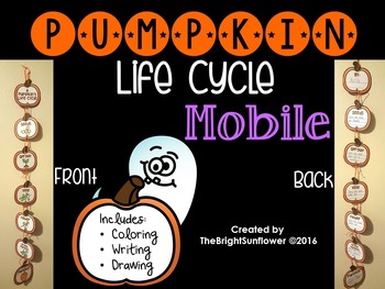 Pumpkin's Life cycle MOBILE