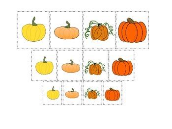 Pumpkin themed Size Sorting preschool learning activity.
