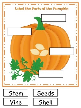 Pumpkin themed What are the Parts preschool learning activ