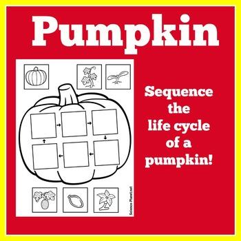 Pumpkin Life Cycle Craft