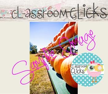 Pumpkins Image_247:Hi Res Images for Bloggers & Teacherpreneurs
