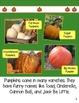 Pumpkins Main Topic and Details R.I.2 Nonfiction Reader an