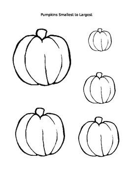 Pumpkins Smallest to Largest