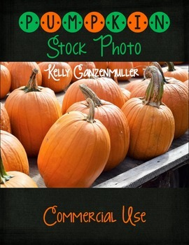 Pumpkins Stock Photo Photograph