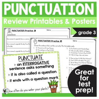 Punctuation, Please! Test Prep Print and Go