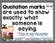 Punctuation Posters and Activities