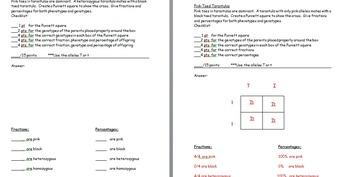 Worksheets Punnett Square Practice Worksheet Answers punnett square practice worksheets with answer by the science keys