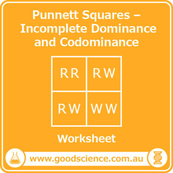 Punnett Squares - Incomplete Dominance and Co-dominance