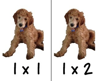 Puppy Multiplication Facts