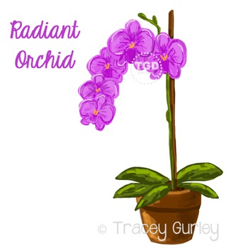 Purple Orchid - purple orchid clip art Printable Tracey Gu
