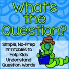 Question Words Practice