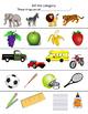 Quick Categories Probe