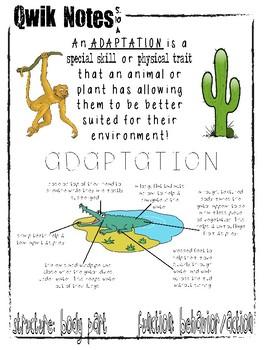 Qwik Notes: Adaptations
