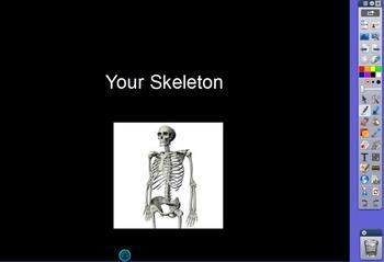 RIGOR Reading Invervention Level 1-Unit 7- Your Skeleton f