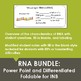 RNA Bundle: Power Point and Graphic Organizer for Interact