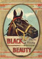 Black Beauty: Multi-Level Reader (3 Stories)